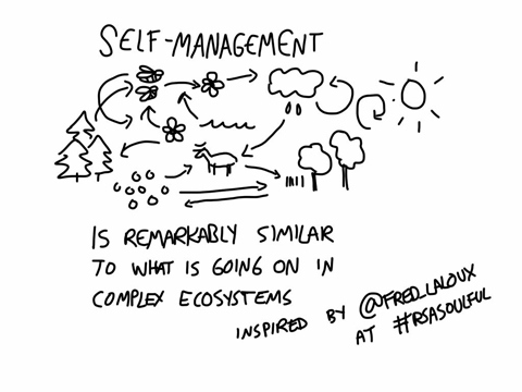 Frederic Laloux RSA talk cartoon self management